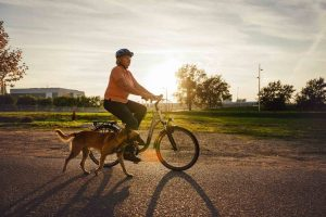 riding with dog